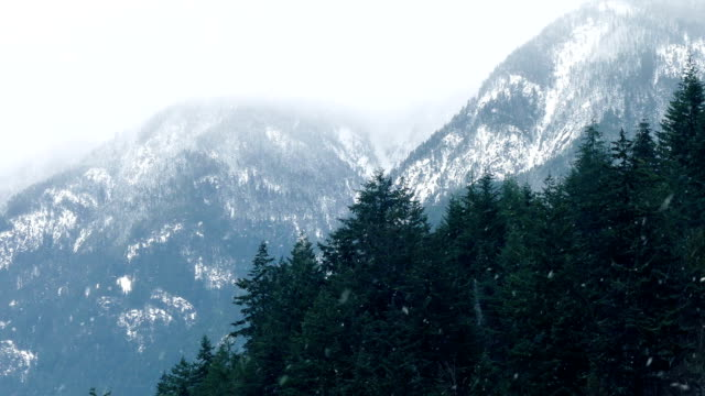Snow Storm In Mountain Wilderness video