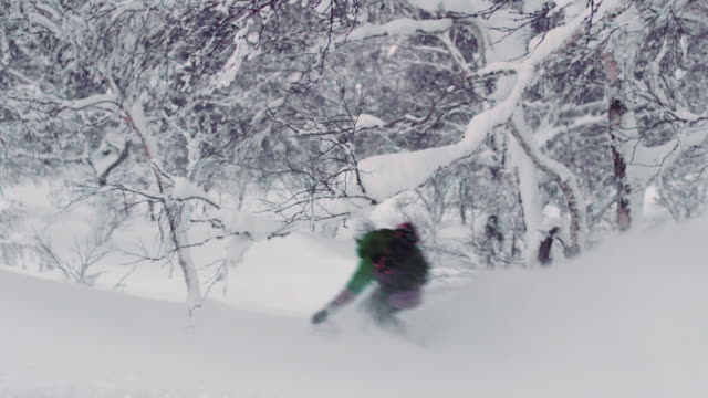 Snowboard Downhill Through Trees in Backcountry Powder Winter Conditions video