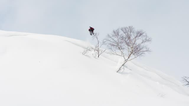 Snowboarder Bonk Tree With Snowboard Sunny Powder Snow Hokkaido Japan video