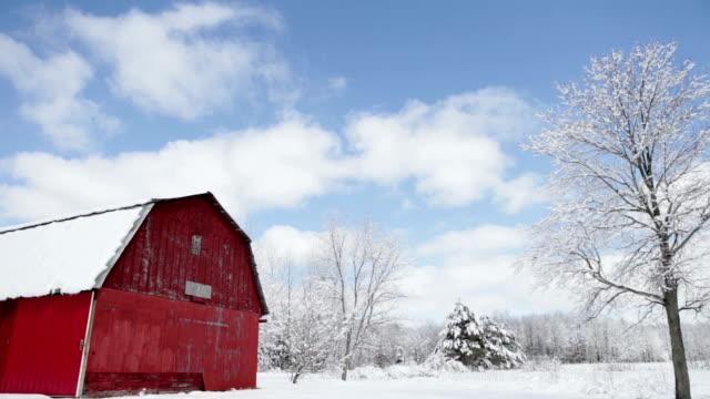 vídeos de stock e filmes b-roll de árvores cobertas de neve no bosque de michigan - celeiro