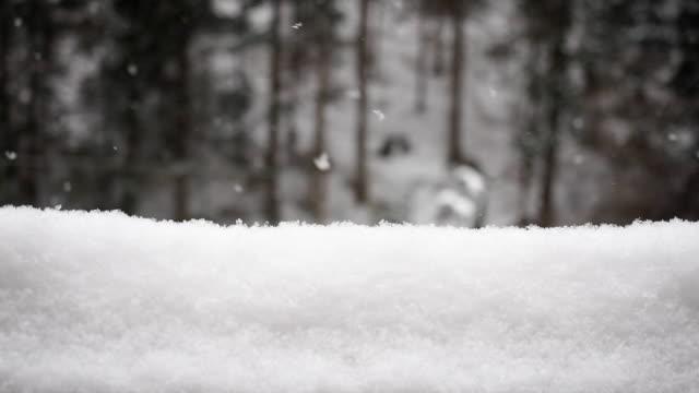 snöfall och i snödriva - slow motion - djupsnö bildbanksvideor och videomaterial från bakom kulisserna