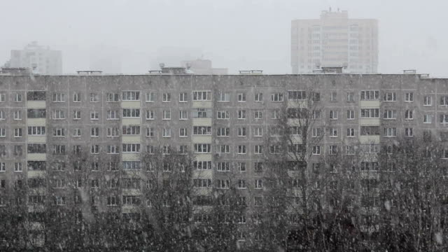 Snowfall in city on the background of multi-storey houses and trees and birds on branches