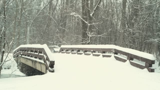 Snowfall on Bridge in Quiet Woods video