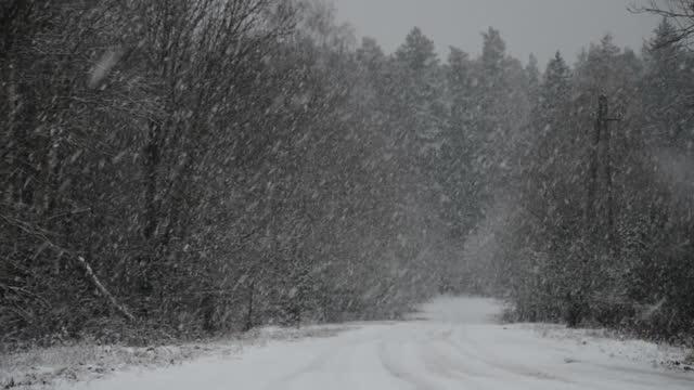 snowfall on winter road video