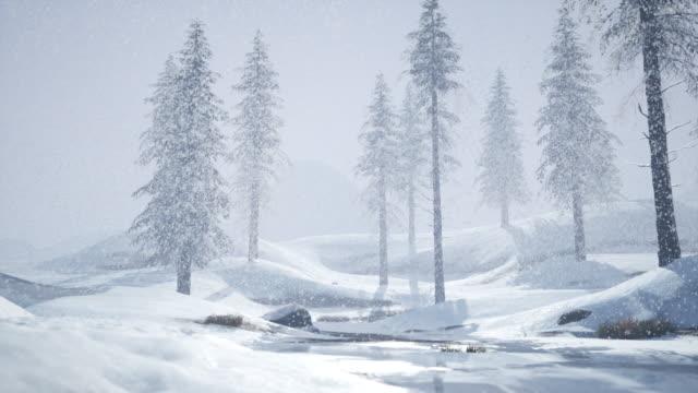 Snowfall Snowing animation siberia stock videos & royalty-free footage