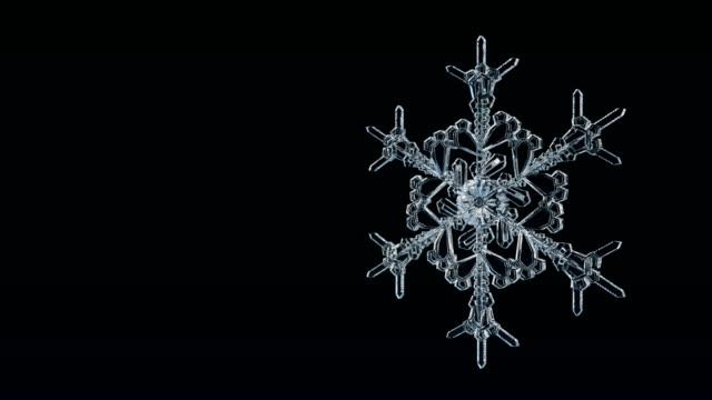Snowflake Ice Crystal Loop 4K. video