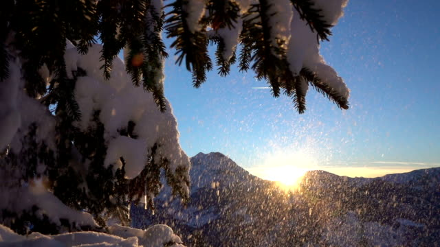 SLOW MOTION: Snowflakes falling on fresh white snow blanket at magical sunrise video
