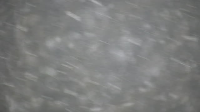 Snowflakes shoot across the screen during a blizzard (High Definition) video