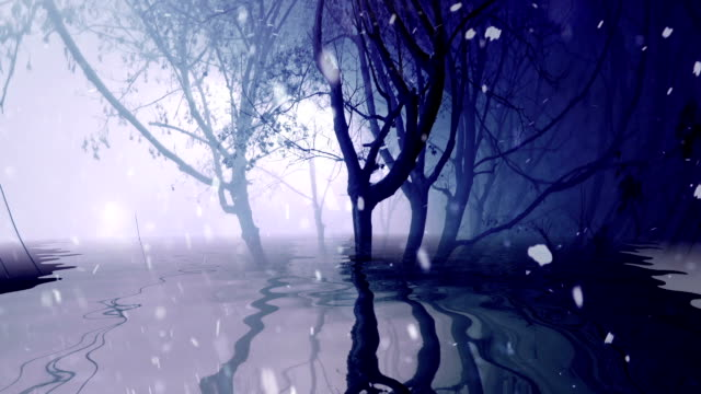 Snowing in foggy trees reflected in water video