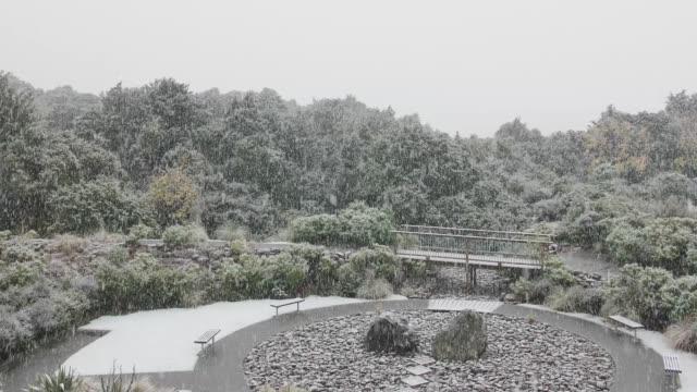 庭の雪 - デッキ点の映像素材/bロール