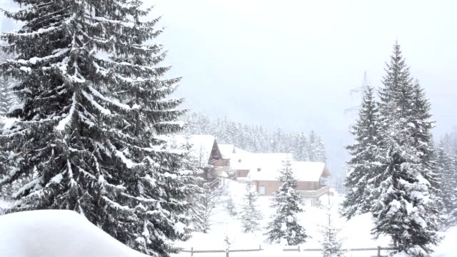 Snowing in the winter ski resort video
