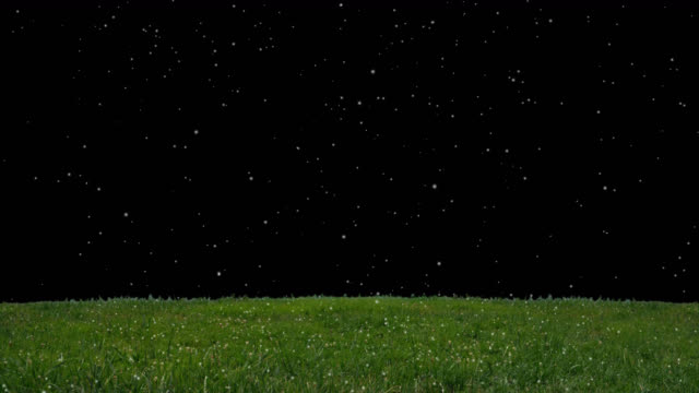 Snowing on the grass with alpha channel background, Seamless Loop, Winter cold weather