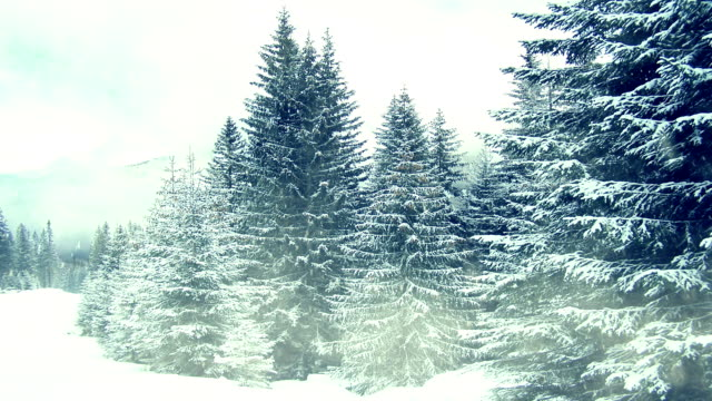 Snowing on trees. Winter in mountains. Seamless video