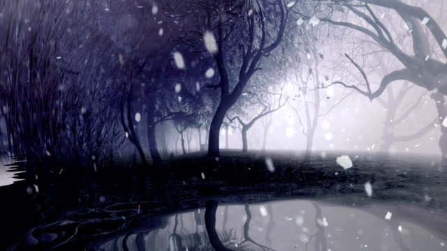 Snowing over trees reflected in water