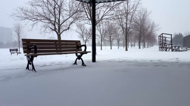 Video Snowing Scene With Park Bench in Day.  Snowy Landscape With Public Park Architecture Under Overcast Sky.