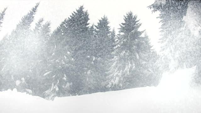 Snowing video