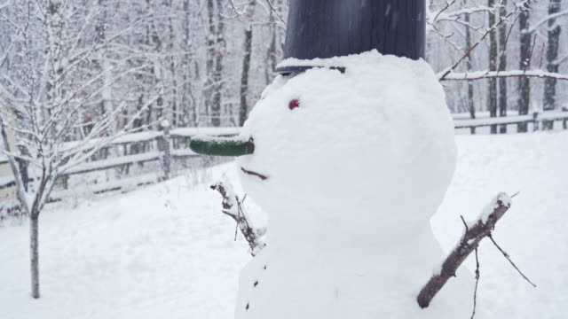 snowman at the backyard under the snowfall in the winter's day - горы поконо стоковые видео и кадры b-roll