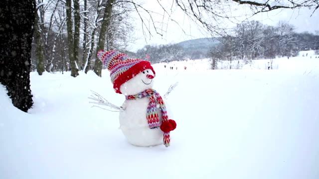 vídeos y material grabado en eventos de stock de muñeco de nieve en invierno paisaje - snowman