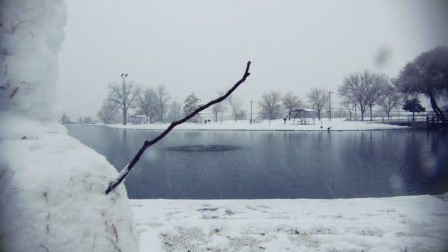 Snowman in Winter Park (4K) video