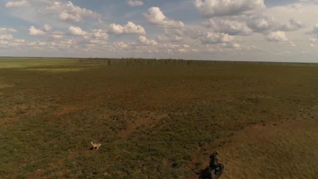 ツンドラの芝生の上で夏にスノーモービルに乗ります。上から見る。 - シベリア点の映像素材/bロール
