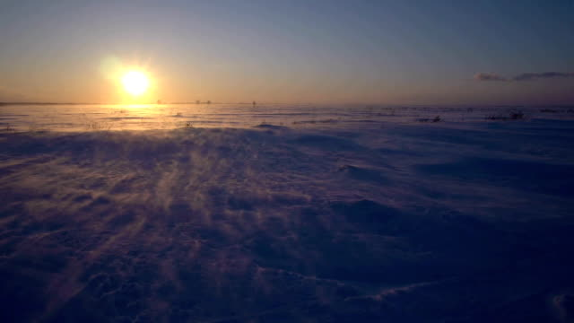 Snowstorm in the arctic. Frozen snow drifts video