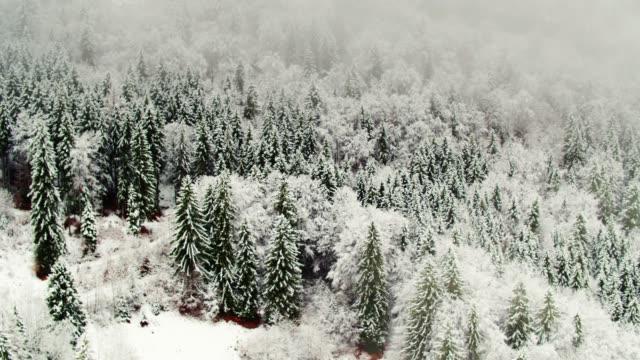Snowy Alpine Scene - Drone Shot video