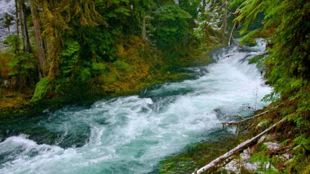Snowy Creek video
