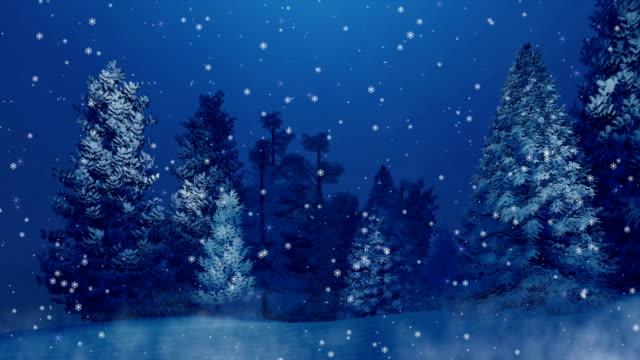 snöiga fir skogen vid snöfall vinternatt cinemagraph - djupsnö bildbanksvideor och videomaterial från bakom kulisserna