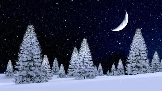 снежный еловый лес при снегопаде зимней ночи с большой полумесяцем в небе - полумесяц форма предмета стоковые видео и кадры b-roll