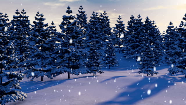 Snowy Forest Loop video