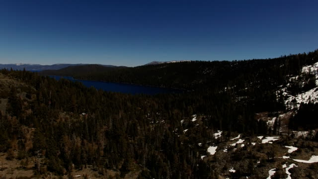 snowy lake surrounded by pine trees - nevada video stock e b–roll