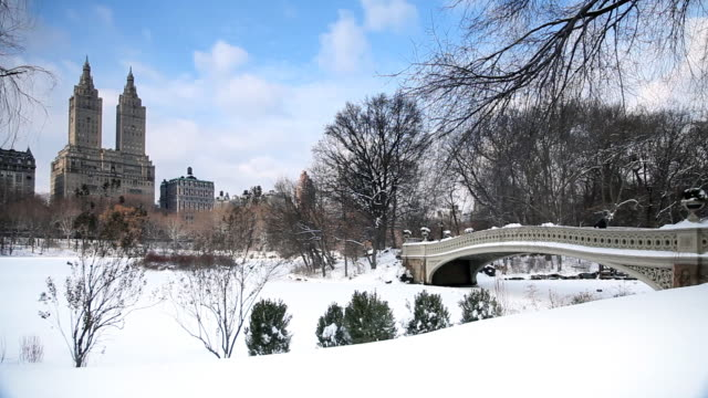 Snowy Landscape In Central Park Bridge and Skyline central park manhattan stock videos & royalty-free footage