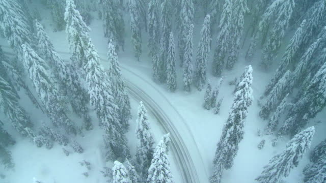 Snowy Mountain Road video