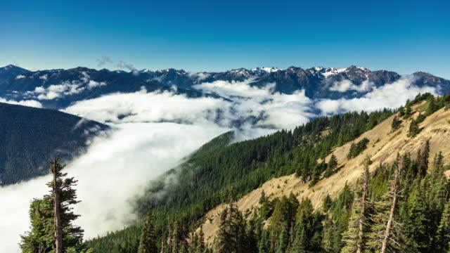 stockvideo's en b-roll-footage met besneeuwde toppen en cloud vulde de valleien in olympic national park - time-lapse - sneeuwkap