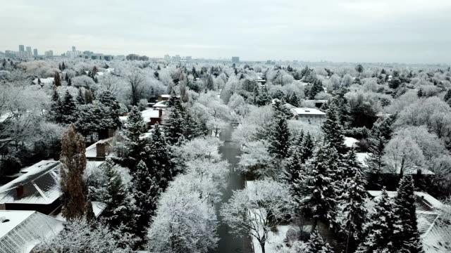snowy residential avenue - проспект стоковые видео и кадры b-roll
