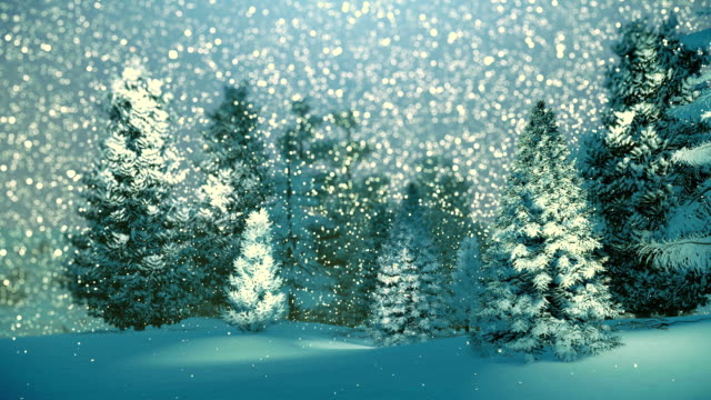 Snowy spruce forest at snowfall night video