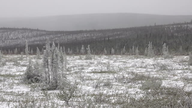 Snowy subarctic tundra Dempster Highway Eagle Plain Plateau Ogilvie Mountains Yukon video