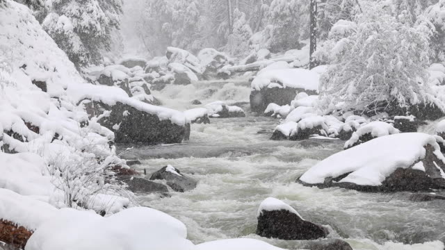 A snowy winter landscape in Yosemite National Park