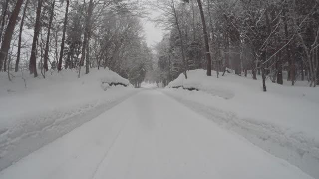 snowy winter road drive - wiejska droga filmów i materiałów b-roll