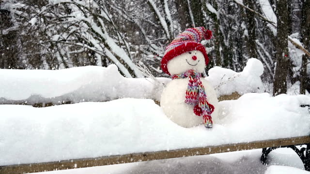 Snwoman with Snow Fall Snowman with Snow Fall, Video of winter landscape snowman stock videos & royalty-free footage