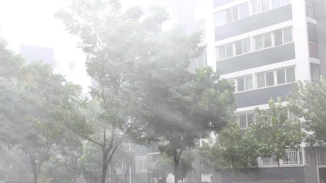 quindi la pioggia che alla sfocatura la lente. - pioggia torrenziale video stock e b–roll