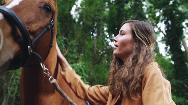 vídeos de stock e filmes b-roll de so strong, so powerful, so beautiful - rancho quinta