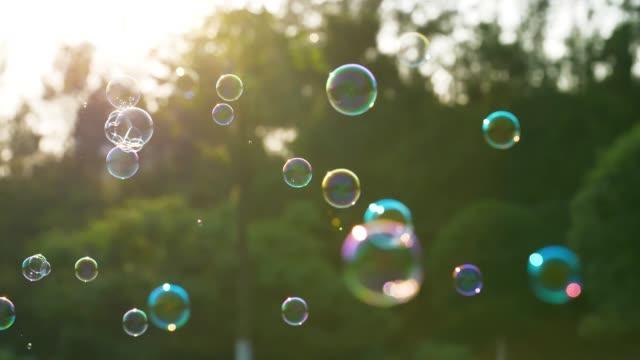 såpbubbla flytande - bubbla bildbanksvideor och videomaterial från bakom kulisserna
