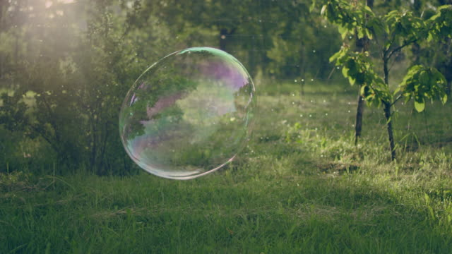 Soap bubbles in the garden