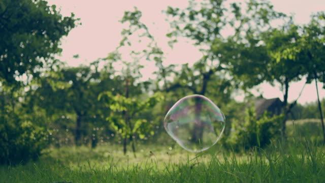 såp bubblor i trädgården - fruktträdgård bildbanksvideor och videomaterial från bakom kulisserna