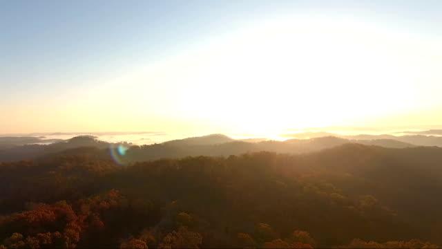 sväva över appalachian ödemark sunrise i kentucky - appalachia bildbanksvideor och videomaterial från bakom kulisserna