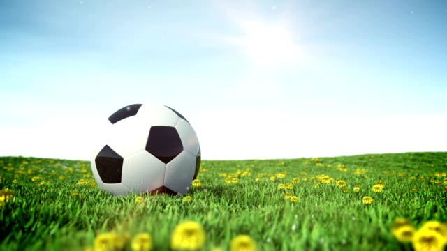 vídeos de stock, filmes e b-roll de bola de futebol em um campo de grama verde - campeonato esportivo