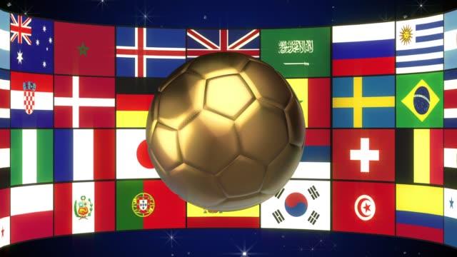 vídeos de stock e filmes b-roll de soccer ball - campeão desportivo