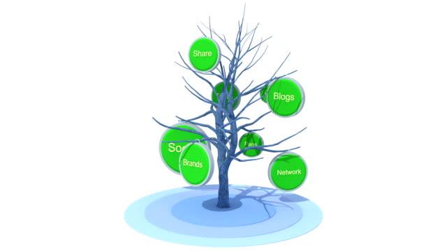 Social Tree video