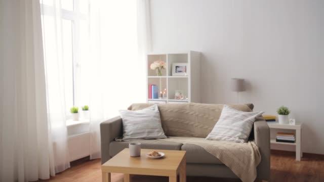 居心地の良いホーム リビング ルームでクッション付きソファ - 居間点の映像素材/bロール